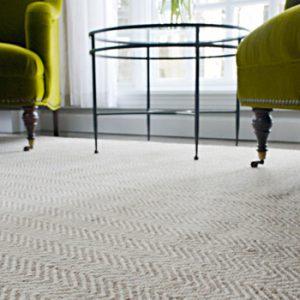 Natural Carpet & Rugs